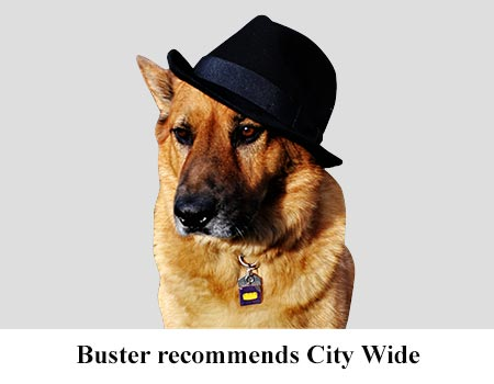 Buster Recommended City Wide Appliances Maytag Repair